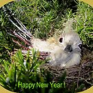   Happy New Year ! Bird in a nest by daffodil
