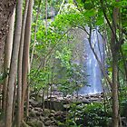 Secret Falls Kauai by socalmark