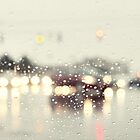 driving in the rain by beverlylefevre