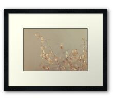 Money tree Framed Print