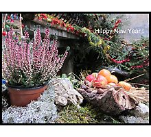Provençal Greeting card  Photographic Print