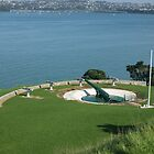 Devonport Guns by Darren Bale