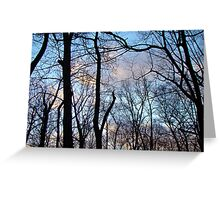 Winter Blues Greeting Card