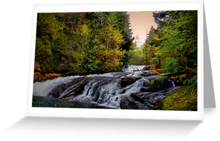 Alsea Falls by Charles & Patricia   Harkins ~ Picture Oregon