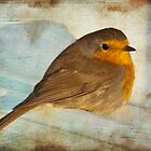 rescued robin by Teresa Pople