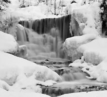 Winter Falls by Mark Williams