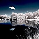 Teeter IR Reflection by gzupruk