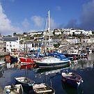 Mevagissy Harbour by sbarnesphotos