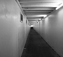 Tunnel Vision by Lois Romer