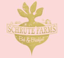 Schrute Farms B&B (no circles) Kids Clothes