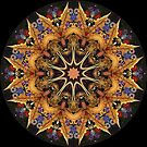 Golden Arrow Kaleidoscope 01 by fantasytripp