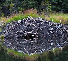 Beaver Lodge by Walter Quirtmair