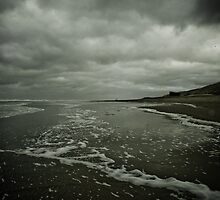 Winter Beach #3 by Remco den Hollander