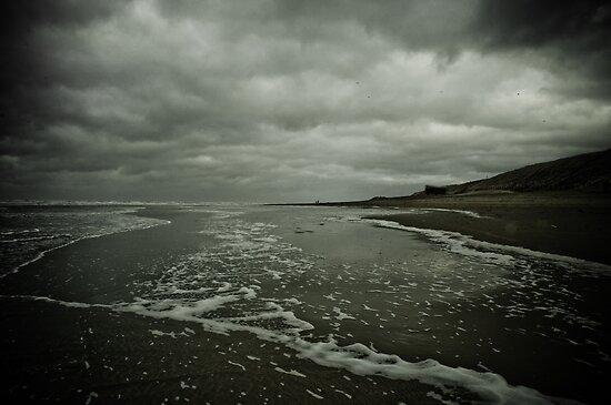 Winter Beach #3 by Remco den Hollander