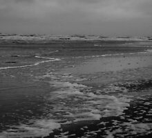 Winter Beach #10 by Remco den Hollander