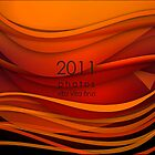 my 2011  by rita vita finzi