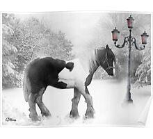 Winter magic Poster