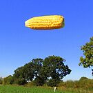 Flying Corn by chaucheong
