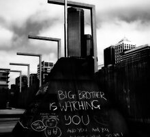 Big Brother by Lois Romer