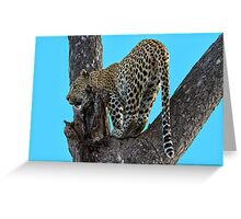 Great View ! Greeting Card