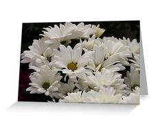Daisy Flowers 7083 Greeting Card