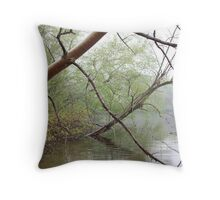Birch Tree Waterscape 3203 Throw Pillow