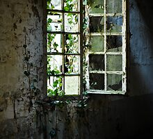 Grungy urbex window #2 by Remco den Hollander