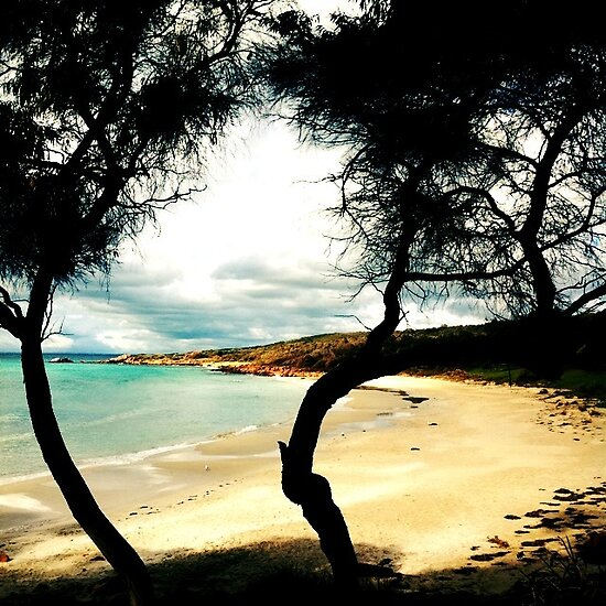 Meelup Beach  by Jules Campbell