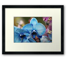 Happy Birthday Greeting Card 7053 Framed Print