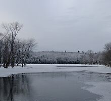 Winter At Eels Creek by Tracy Faught
