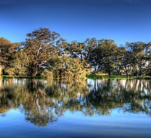 A Little Bit Of Luck - Horseshoe Laggoon , Albury, NSW Australia - The HDR Experience by Philip Johnson