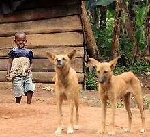 Girl with dogs, Uganda, Africa by Hannah Nicholas