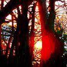 Evening Sun 2 by doodledesign