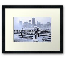 Face of the Falls Framed Print