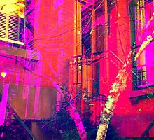 townhouse & tree by ShellyKay