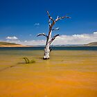 Lake Eucumbene by Dean Cunningham