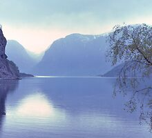 Norwegian Fiord. by johnrf