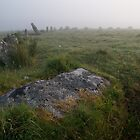 Stannon Stone Circle by Neil Cox