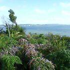 Victoria coast  by peterthompson