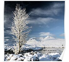 Glencoe winter scenery Poster