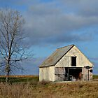 Corn Crib Along the Highway by Sheryl Gerhard