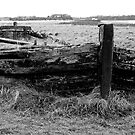 Remains of the barge Harriet with bow wave and sea of grass by Robert Down