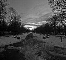 Winter no. 1 by 7thsensephoto