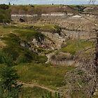 Horseshoe Canyon Panorama by Bruce Guenter
