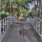 A Park Bridge. by Eve Parry