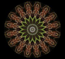 Mandala - Loops by Christopher Marshall