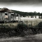 Shack - Bruny Island by Uffe Schulze
