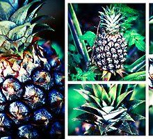 Pineapple Express by Ann Marie  Barnes