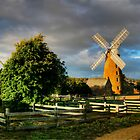 Callington Mill - Oatlands 7 by Uffe Schulze
