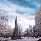 Essex Common Burial Ground by Radharc21